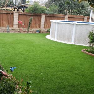 Artificial Grass 13