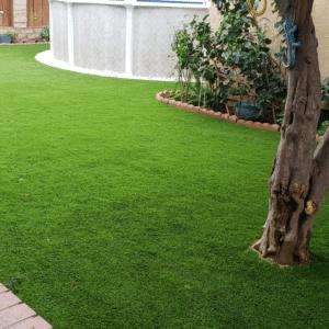 Artificial Grass 14