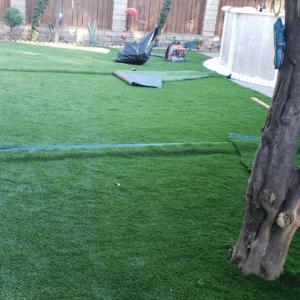 Artificial Grass 15
