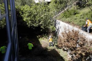 Mulholland Backyard Renovation (1) (1)