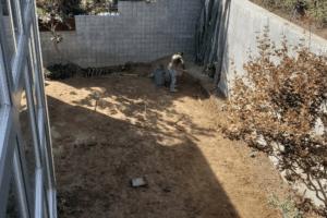 Mulholland Backyard Renovation (2) (1)