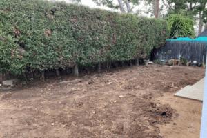 Yorba Linda Landscape Remodeling