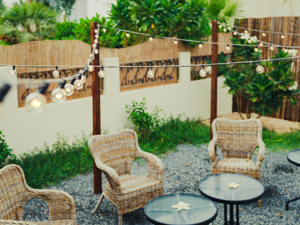 ADD PRIVACY IN YOUR YARD (5)
